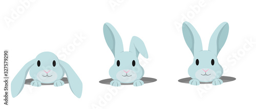 Stampa su Tela Rabbit peeps out of hole