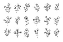 Set Of Flowers, Black Line Art...