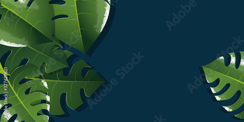 Monstera illustration background