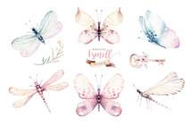Watercolor Colorful Butterflie...