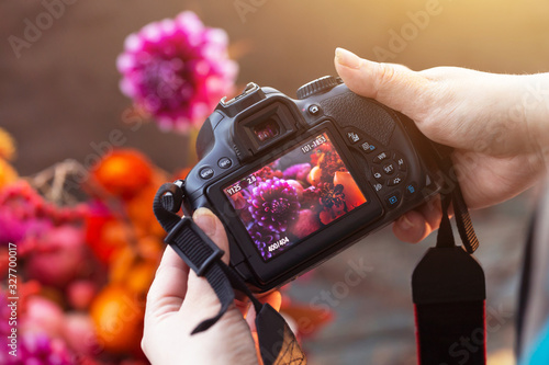 Fototapeta Camera on hands closeup. Making nature photo and video with flowers obraz