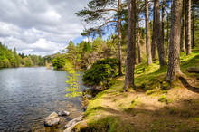 A Picturesque View Of Tarn How...