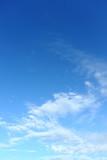Fototapeta Na sufit - white cloud on blue sky weather background