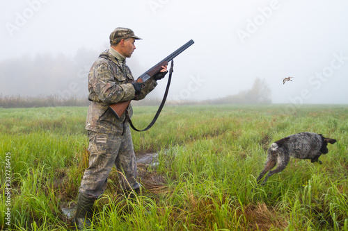Fotografiet hunter with a dog and a snipe in a meadow