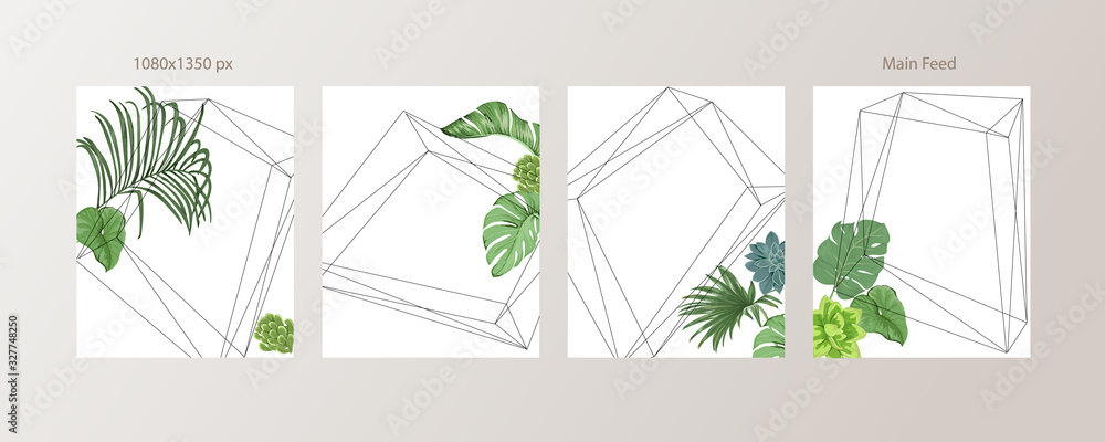 Fototapeta Green and Tropical cover design template, Social media stories and Main Feed Background  with green tropical leaf geometric shapes and minimal style decoration. Vector illustration.