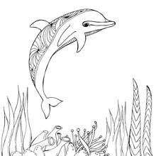 Dolphins On The Sea, Line Illu...
