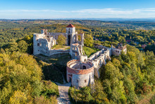 Ruins Of Medieval Tenczyn Cast...