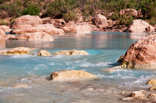 Little Colorado River Spring A...