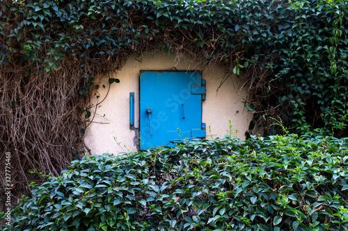 Photo Israeli bomb shelter hidden in the forest