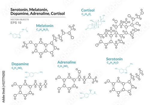 Serotonin, Melatonin,  Dopamine, Adrenaline, Cortisol Canvas Print