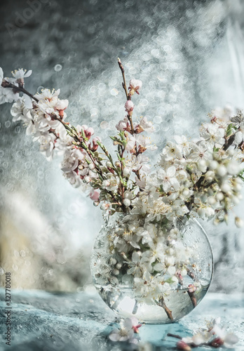 Flowering branches with white delicate flowers of cherry and apricot in a glass transparent vase Fototapete