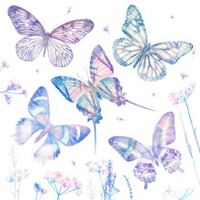 Watercolor Butterflies Isolate...