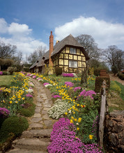English Thached Cottage In The Spring