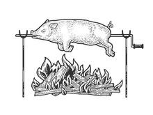 Bonfire Pig Pork Sketch Engrav...