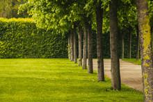 Beautiful Panorama Landscape W...
