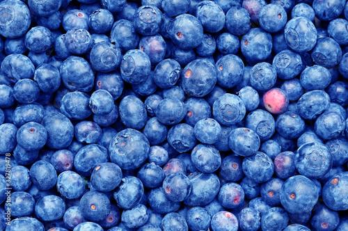 Fényképezés arándano azul fruta blanco montón venta 4M0A9341-as20