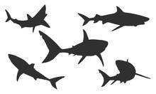 Vector Shark Silhouettes On A ...