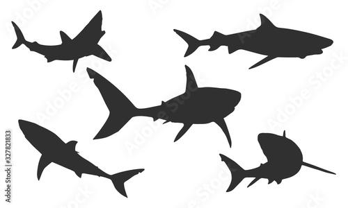 Obraz na plátně Vector shark silhouettes on a white background