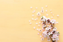 Photo Of Spring White Cherry Blossom Tree On Pastel Yellow Wooden Background. View From Above, Flat Lay