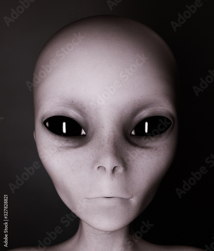 Photo Alien,Woman from the outside world,3d rendering