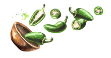 Bowl With Jalapeno Green Hot Chili Pepper, Whole Pods, Chopped, Halved, And Sliced. Hand Drawn Watercolor Illustration  Isolated On White Background
