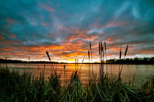 Sunset Over The Lake With Cattails In Silhouette