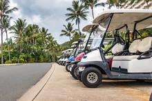 Electric Golf - Passenger Bugg...