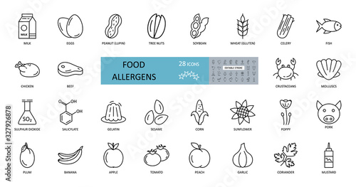 Photo Food allergens icon