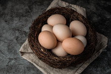 Natural, Organic Eggs In Chick...