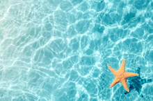 Starfish On The Summer Beach I...