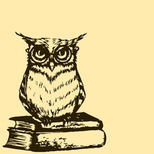 A Smart Owl With Glasses Sits ...