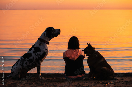 Fototapeta Unrecognizable woman with dogs watching sunset on beach obraz