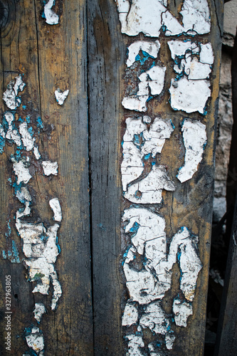 Texture of cracked white on old doors Canvas Print