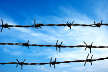 Close Up Barbed Wire Fence Ove...