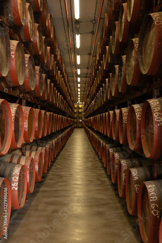 bodega de vino grande Canvas Print