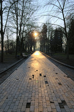 Sunrise In The Park. Beautiful Landscape View Of Khreshchaty Park. The Sun Is Reflected Off The Gray Stone Walkway. Spring Morning In Kyiv, Ukraine