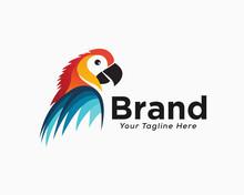 Elegant Colorful Parrot Half Body View Logo Design Inspiration