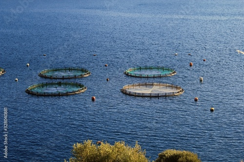 Aquaculture settlement, fish farm with floating circle cages around bay of Attica in Greece Canvas Print