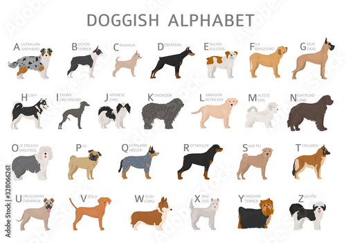 Fotografia Doggish alphabet for dog lovers