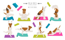 Yoga Dogs Poses And Exercises Poster Design. Smooth Fox Terrier And Wire Fox Terrier Clipart
