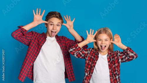 Obraz na plátne Siblings Fooling