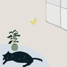 猫とコーヒーの木
