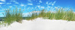 Leinwanddruck Bild Ostsee - Düne