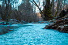 Icy Stream Near The Woods
