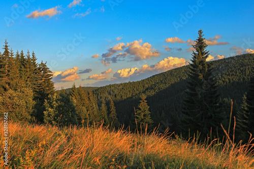 Photo Typical Carpathian landscape, summer aspect