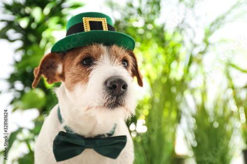 fototapeta na drzwi i meble Jack Russell terrier with leprechaun hat and bow tie outdoors, space for text. St. Patrick's Day