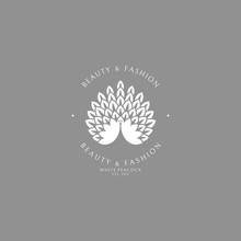 White Peacock. Logo Template