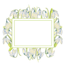 Romantic Spring Frame With Sno...