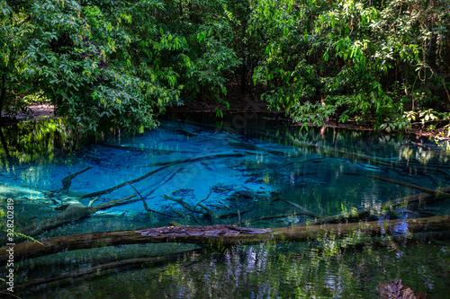 Fototapety, obrazy: Emerald Pool-Krabi