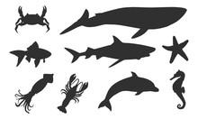 Vector Silhouettes Of Sea Anim...